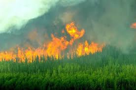 Canadian Wildland Fire Training by Drought And Wild Fire Facts Wood Buffalo National Park Friends