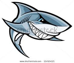 great white shark clipart shark fish pencil and in color great