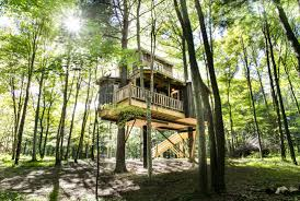 old pine the mohicans rustic barn wedding venue tree house