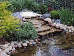 water gardens a wonderful way to unwind glenns garden gardening blog