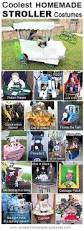 Halloween Supplies Best 25 Halloween Costumes For Infants Ideas On Pinterest