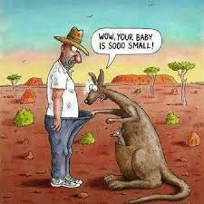 Funny Australia Day Memes - 20 best australia images on pinterest paisajes beautiful