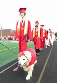 dog graduation cap and gown school comfort dog gets photo in yearbook with graduating class