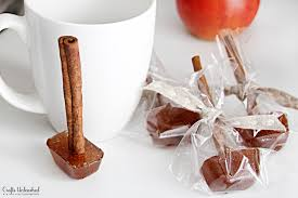homemade apple cider gifts with spicy cinnamon mulling sticks