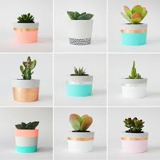 32 best planters images on pinterest gardening plants and clay