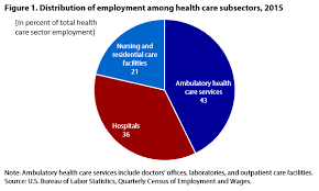 us bureau labor statistics hospital workers an assessment of occupational injuries and