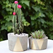 Concrete Planters Best 25 Concrete Pots Ideas On Pinterest Concrete Planters