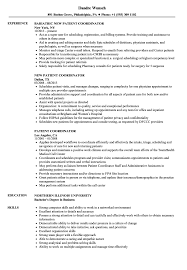 resume templates for administrative officers exam support quotes patient coordinator resume sles velvet jobs