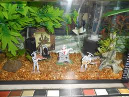 Folk Art Halloween Decorations Halloween Decorations In An Aquarium Just Be Careful Not To Put