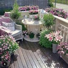 pflanzen f r balkon pflanzen fr balkon und garten über die blumen pflanzen balkon