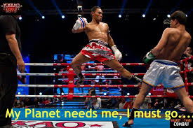 Muay Thai Memes - saenchai is soo awesome his technique is so inspiring to watch