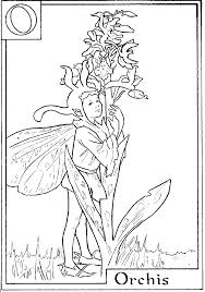 print letter o for orchis flower fairy coloring page or download
