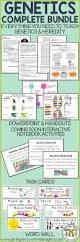 135 best biology revision for gcse images on pinterest life