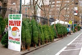 arbitrage opportunities in the christmas tree market in lower west