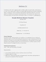 server resume template cocktail server resume buildbuzz info