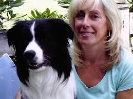 royal canine dog training llc why a puppy under the christmas