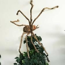chambre hant secret chambre hantée bar décorer terreur géant poilu araignée