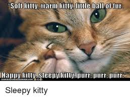 Sleepy Kitty Meme - 25 best memes about happy kitty happy kitty memes