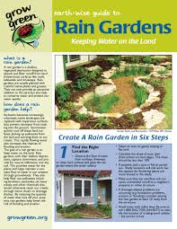 native plants of central texas reel in rainwater with plants u0026 rain gardens central texas gardener