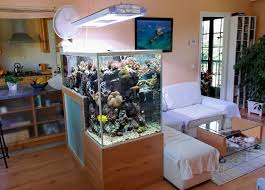 home design less is more declutter with another aquarium simple