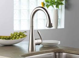 kohler kitchen sink faucets brushed nickel kohler kitchen sink faucets centerset single handle