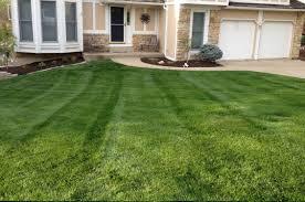 residential lawn fertilization services kansas city lawn care