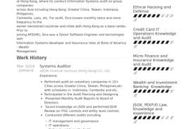 Senior Auditor Resume Sample by It Auditor Resume Sample Reentrycorps