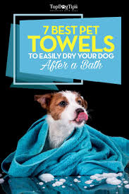 Soggy Doggy Doormat Canada Best Dog Towel Top 7 Choices For Drying Dogs After A Bath 2017