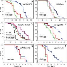 Smk 1 An Essential Regulator Of Daf 16 Mediated Longevity Cell