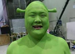 Shrek Memes - create meme shrek is half chinese shrek is half chinese mouth