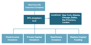 new york life help desk organizational structure