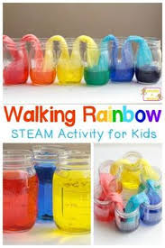 easy rainbow skittles science experiment science experiments