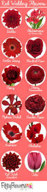 best 25 shades of red names ideas on pinterest names of colors