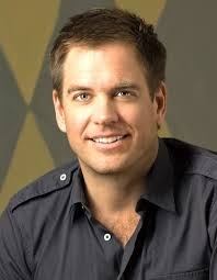 michael weatherly hairstyles