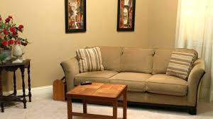 living room couches incredible living room couches in wonderful plan 6 sccacycling com
