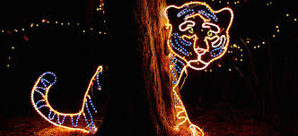 denver zoo lights hours lyft is your ride to denver zoo lights lyft blog