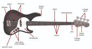 bass guitar buyer u0027s guide u2013 the vault at music u0026 arts