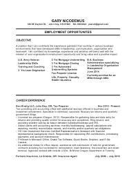 Venture Capital Resume Insurance Agent Resume Independent Insurance Agent Resume Sample