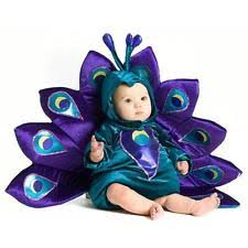 3 6 Month Halloween Costumes Baby Peacock Costume Ebay