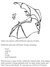 coloring page of a bat bat facts coloring book page