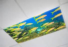 Decorative Ceiling Light Panels Inspiring Drop Ceiling Light Panels Decorative Fluorescent Light