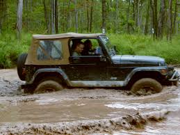 jeep mud mud puppy jeepers