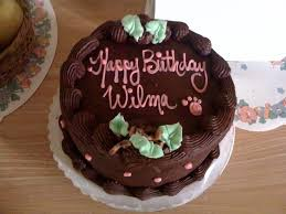 wilma the pug let them eat cake or not