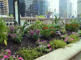 a safe haven landscaping