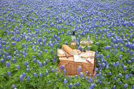 Wine And Country Baskets Road Tripping Through Hill Country Texas U0027 Up And Coming Vineyards