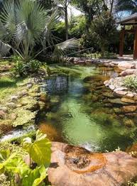 Backyard Swimming Ponds by How To Build Your Own Natural Swimming Pool Swimming Pools