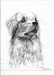 golden retriever puppy sketch by artemishunt123 on deviantart