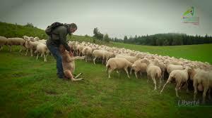 chambre agriculture correze re gardez nos valeurs vincent