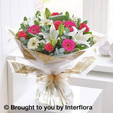 sunday flower delivery and germini standard flower delivery