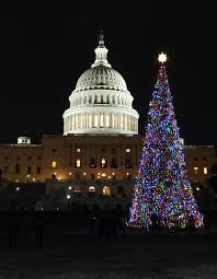Washington Dc Zoo Lights Christmas In Washington D C Touringplans Com Blog